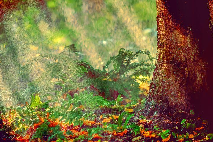 kerti öntöző